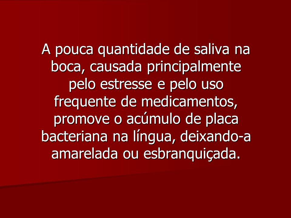 Saburra Lingual