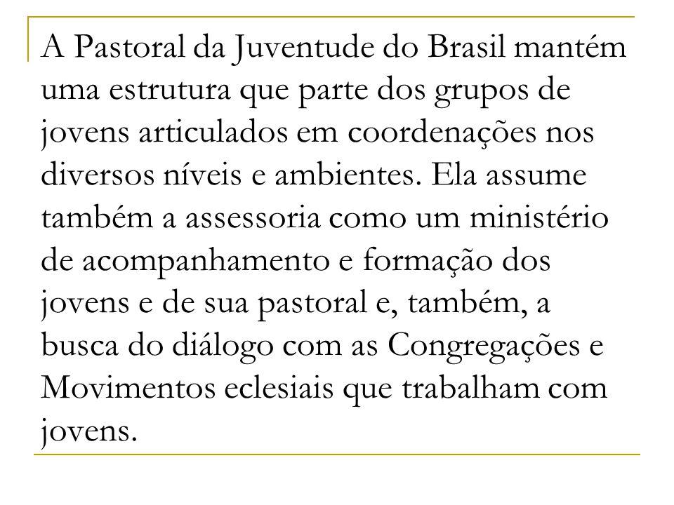 A Pastoral da Juventude do Brasil mantém uma estrutura que parte dos grupos de jovens articulados em coordenações nos diversos níveis e ambientes. Ela
