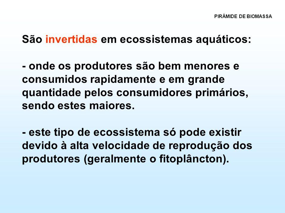 São invertidas em ecossistemas aquáticos: - onde os produtores são bem menores e consumidos rapidamente e em grande quantidade pelos consumidores prim