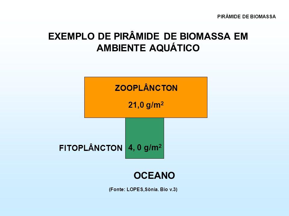 4, 0 g/m 2 21,0 g/m 2 ZOOPLÂNCTON FITOPLÂNCTON OCEANO PIRÂMIDE DE BIOMASSA EXEMPLO DE PIRÂMIDE DE BIOMASSA EM AMBIENTE AQUÁTICO (Fonte: LOPES,Sônia.