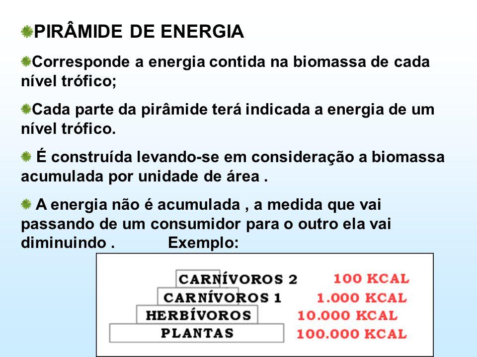 PIRÂMIDE DE ENERGIA Corresponde a energia contida na biomassa de cada nível trófico; Cada parte da pirâmide terá indicada a energia de um nível trófico.