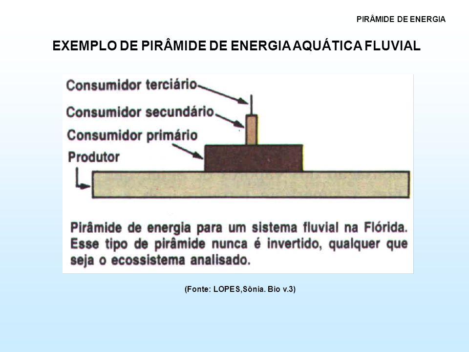 EXEMPLO DE PIRÂMIDE DE ENERGIA AQUÁTICA FLUVIAL (Fonte: LOPES,Sônia. Bio v.3)