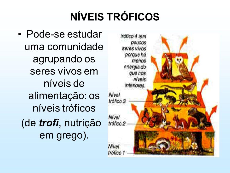 NÍVEIS TRÓFICOS •Pode-se estudar uma comunidade agrupando os seres vivos em níveis de alimentação: os níveis tróficos (de trofi, nutrição em grego).