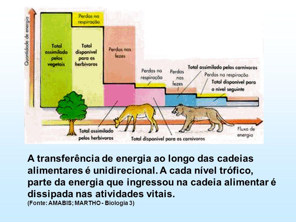 A transferência de energia ao longo das cadeias alimentares é unidirecional. A cada nível trófico, parte da energia que ingressou na cadeia alimentar
