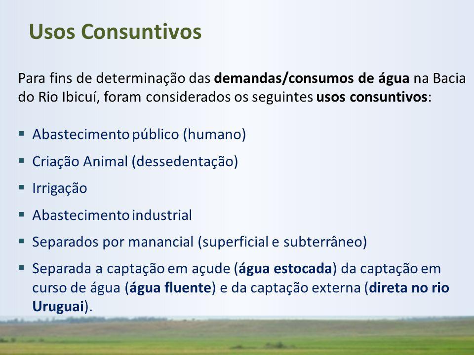 Para fins de determinação das demandas/consumos de água na Bacia do Rio Ibicuí, foram considerados os seguintes usos consuntivos:  Abastecimento públ