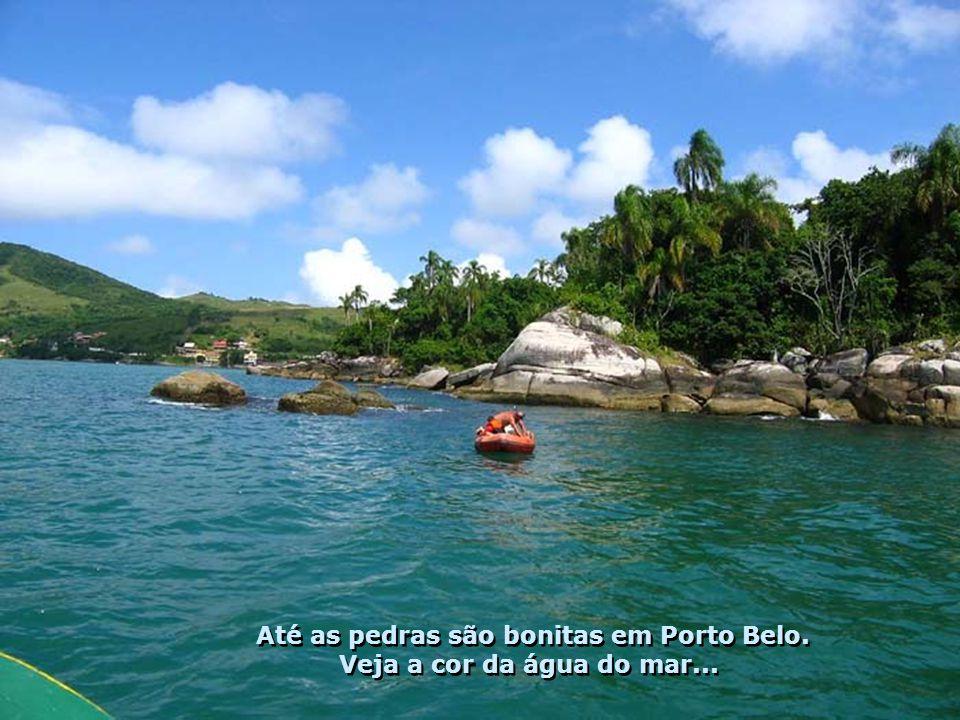 Ao sabor dos ventos, seguimos por um emocionante passeio de escuna contemplando a beleza da costa de Porto Belo... Ao sabor dos ventos, seguimos por u