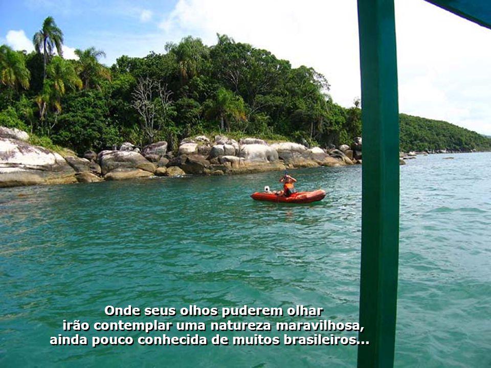 Ao sabor dos ventos, seguimos por um emocionante passeio de escuna contemplando a beleza da costa de Porto Belo...
