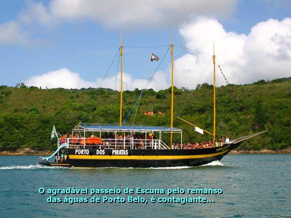 Onde seus olhos puderem olhar irão contemplar uma natureza maravilhosa, ainda pouco conhecida de muitos brasileiros...