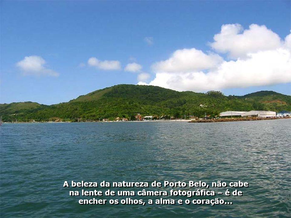 O agradável passeio de Escuna pelo remanso das águas de Porto Belo, é contagiante...
