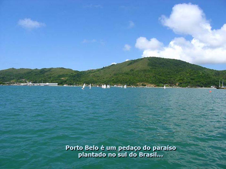 A beleza da natureza de Porto Belo, não cabe na lente de uma câmera fotográfica – é de encher os olhos, a alma e o coração... A beleza da natureza de
