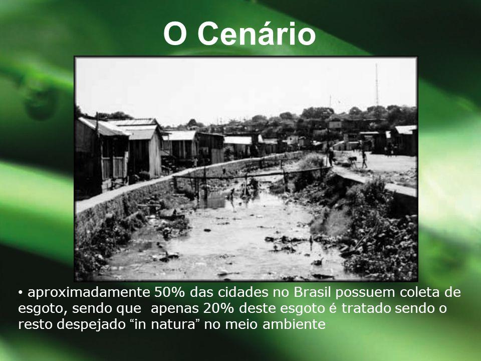 """• aproximadamente 50% das cidades no Brasil possuem coleta de esgoto, sendo que apenas 20% deste esgoto é tratado sendo o resto despejado """" in natura"""