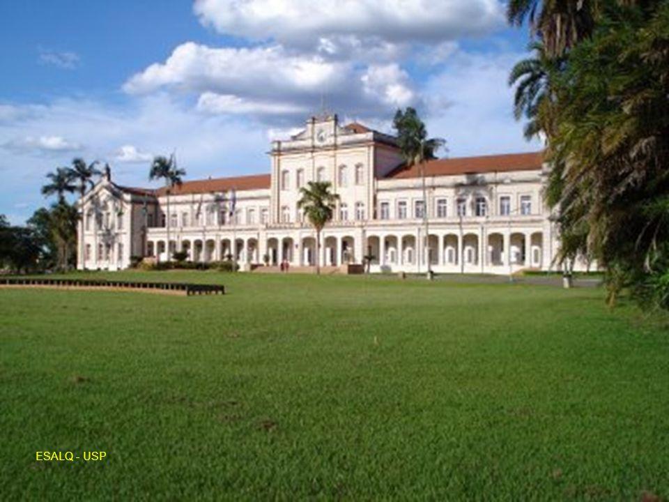 AQUÁRIO DO MUSEU