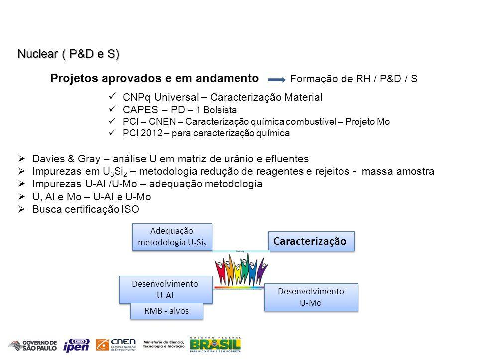 Química Atmosférica Medidas de Gases de Efeito Estufa na Amazônia e Costa Brasileira Principais Realizações Objetivos principais: 1- Determinar o Fluxo de Emissão/absorção dos Gases de Efeito Estufa 2- Construir a Rede Brasileira de Monitoramento Gases de Efeito Estufa Somente Dra.