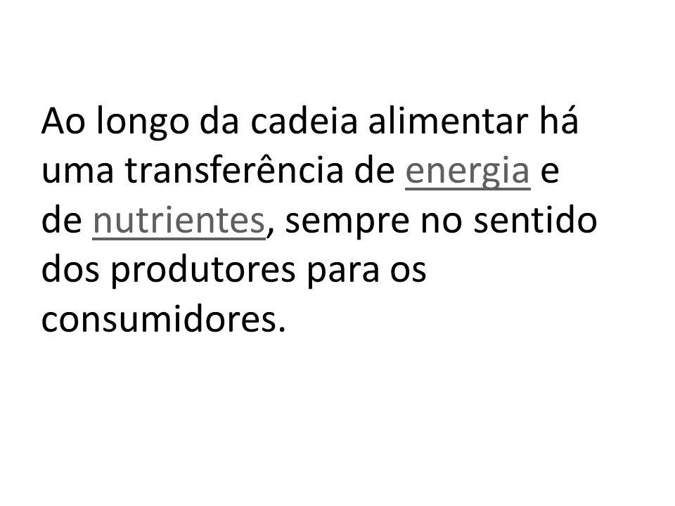 Ao longo da cadeia alimentar há uma transferência de energia e de nutrientes, sempre no sentido dos produtores para os consumidores. energianutrientes