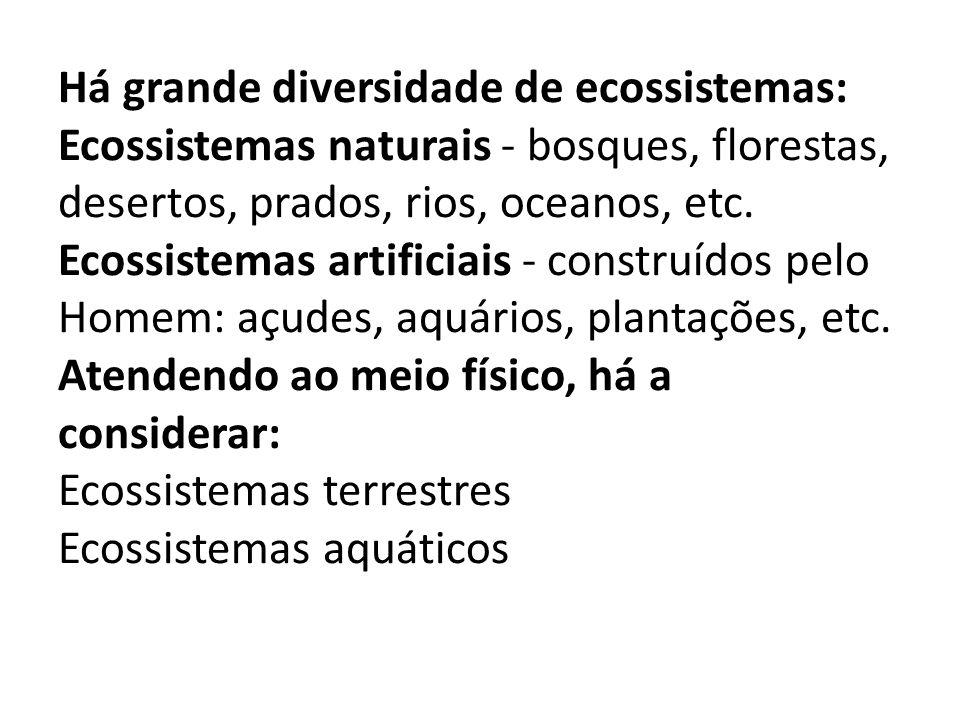 Há grande diversidade de ecossistemas: Ecossistemas naturais - bosques, florestas, desertos, prados, rios, oceanos, etc. Ecossistemas artificiais - co