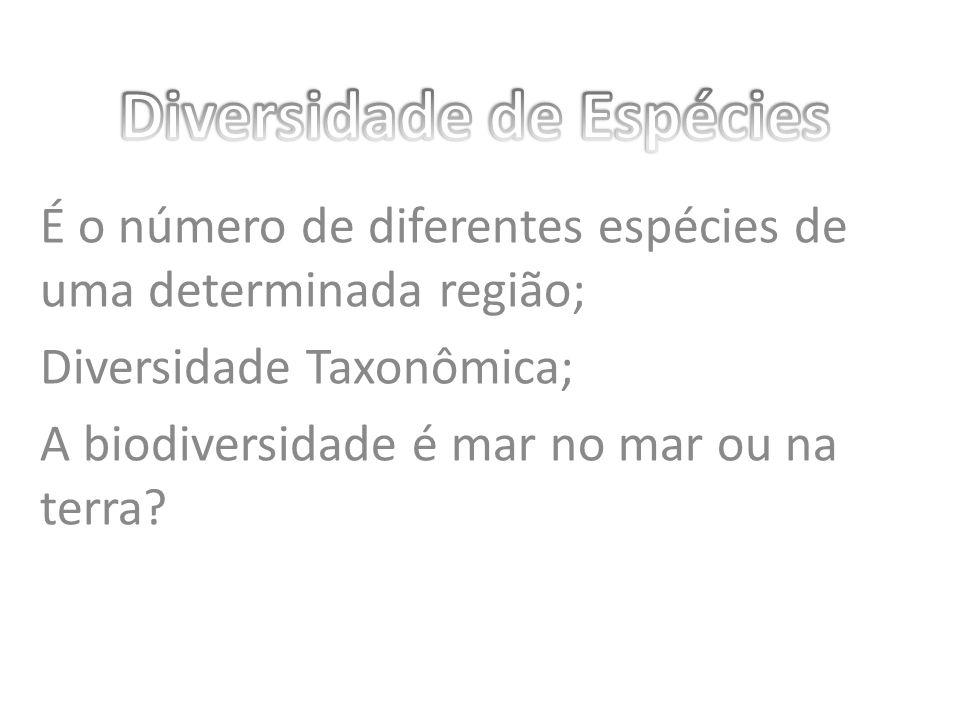 É o número de diferentes espécies de uma determinada região; Diversidade Taxonômica; A biodiversidade é mar no mar ou na terra?