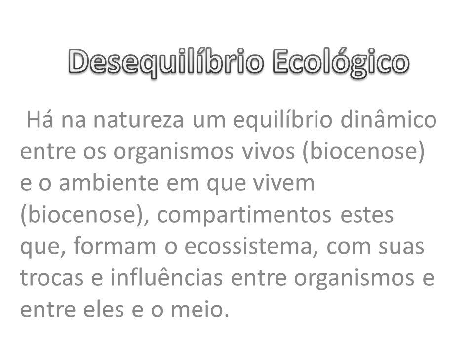 Há na natureza um equilíbrio dinâmico entre os organismos vivos (biocenose) e o ambiente em que vivem (biocenose), compartimentos estes que, formam o