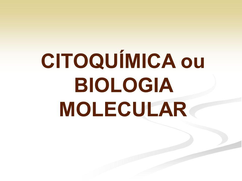 CITOQUÍMICA ou BIOLOGIA MOLECULAR