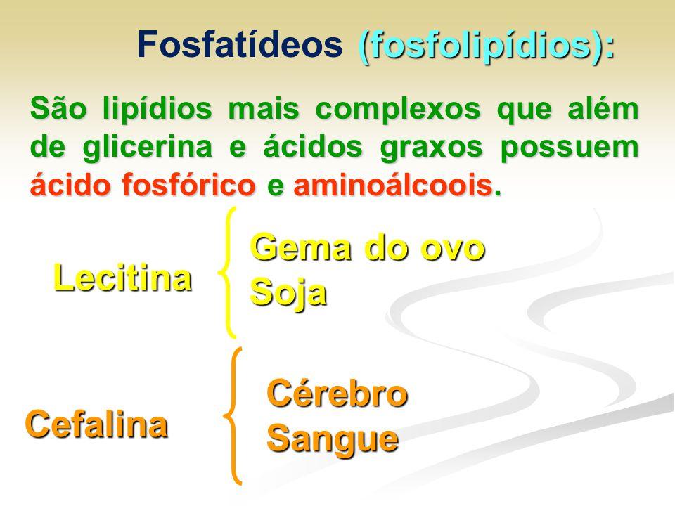 (fosfolipídios): Fosfatídeos (fosfolipídios): São lipídios mais complexos que além de glicerina e ácidos graxos possuem ácido fosfórico e aminoálcoois