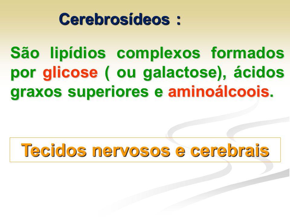 Cerebrosídeos : São lipídios complexos formados por glicose ( ou galactose), ácidos graxos superiores e aminoálcoois. Tecidos nervosos e cerebrais