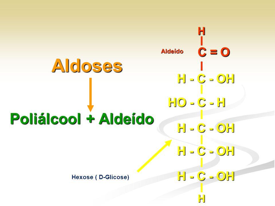 Aldoses Poliálcool + Aldeído Hexose ( D-Glicose) H - C - OH HO - C - H H - C - OH H C = O H HAldeído