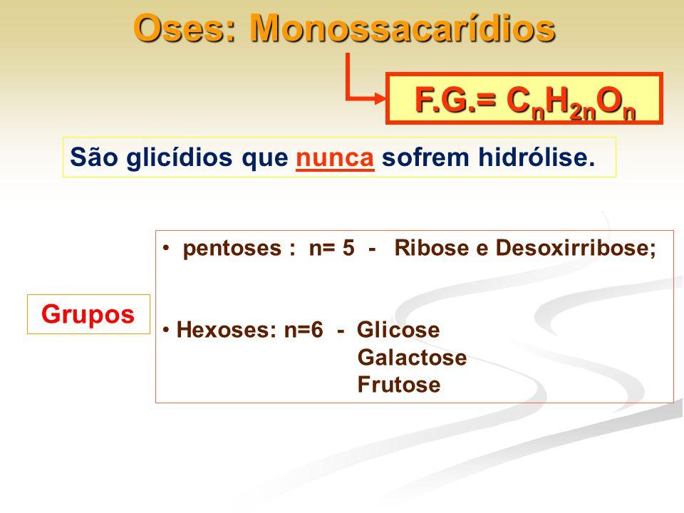 Oses: Monossacarídios F.G.= C n H 2n O n São glicídios que nunca sofrem hidrólise. Grupos • pentoses : n= 5 - Ribose e Desoxirribose; • Hexoses: n=6 -