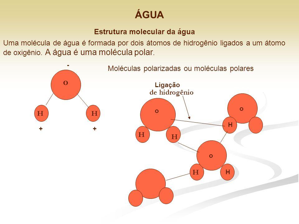 Estrutura molecular da água Uma molécula de água é formada por dois átomos de hidrogênio ligados a um átomo de oxigênio. A água é uma molécula polar.
