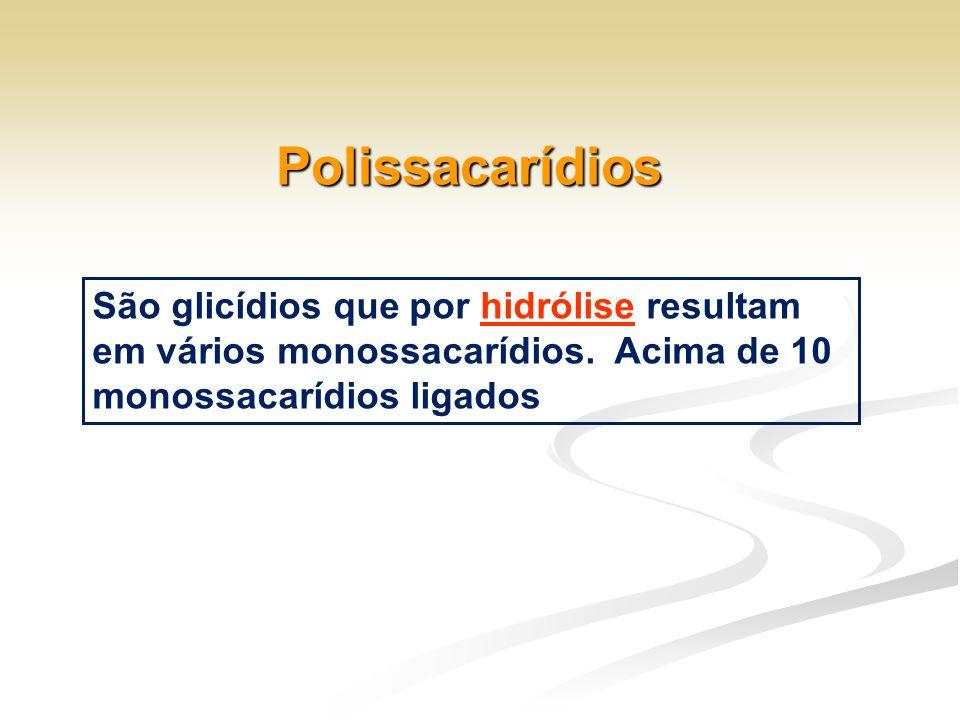 Polissacarídios São glicídios que por hidrólise resultam em vários monossacarídios. Acima de 10 monossacarídios ligados