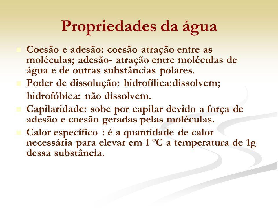 Cerídeos (ceras): São ésteres derivados de ácidos graxos superiores com álcoois superiores.