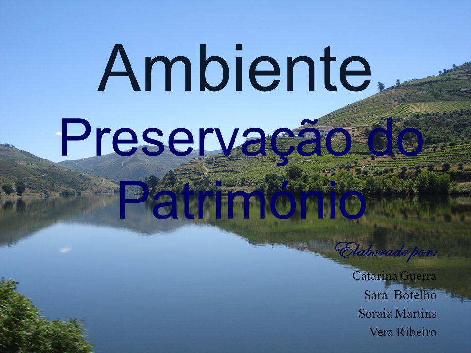 Ambiente Preservação do Património Elaborado por: Catarina Guerra Sara Botelho Soraia Martins Vera Ribeiro