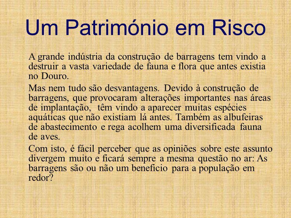 Vitorino Nemésio Vitorino Nemésio Mendes Pinheiro da Silva nasceu na Praia da Vitória a 19 de Dezembro de 1901 e foi um poeta, escritor e intelectual de origem açoriana que se destacou como romancista, autor de Mau Tempo no Canal, e professor da Faculdade de Letras da Universidade de Lisboa.