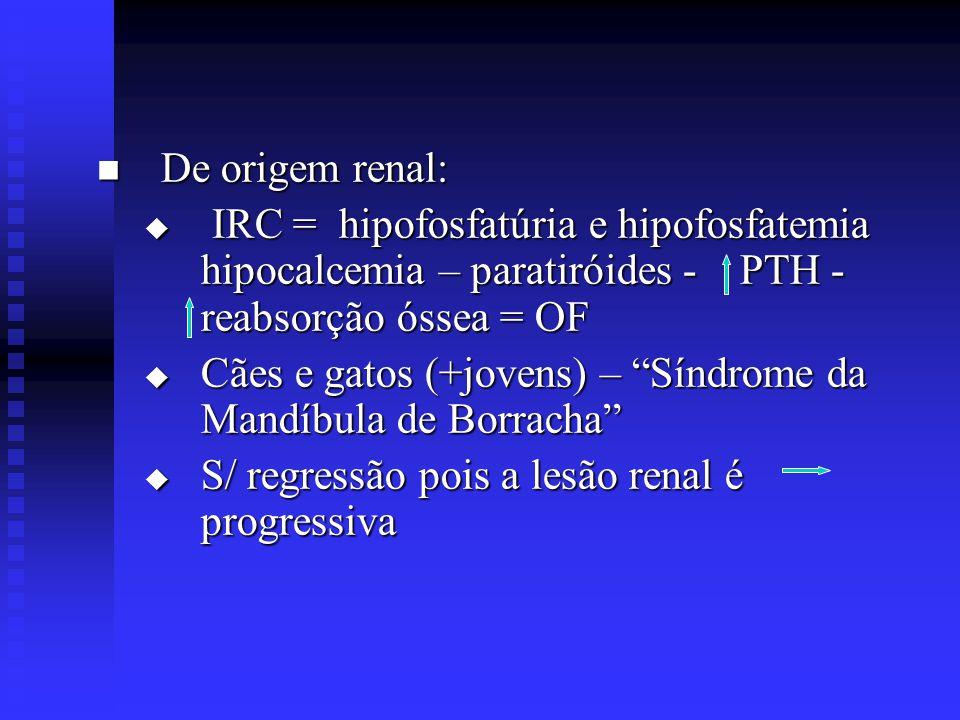 """ De origem renal:  IRC = hipofosfatúria e hipofosfatemia hipocalcemia – paratiróides - PTH - reabsorção óssea = OF  Cães e gatos (+jovens) – """"Síndr"""