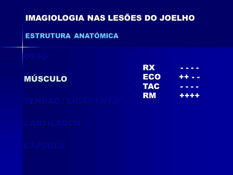 OSSOMÚSCULO TENDÃO / LIGAMENTO CARTILAGEMCÁPSULA IMAGIOLOGIA NAS LESÕES DO JOELHO ESTRUTURA ANATÓMICA RX - - - - ECO ++ - - TAC - - - - RM ++++