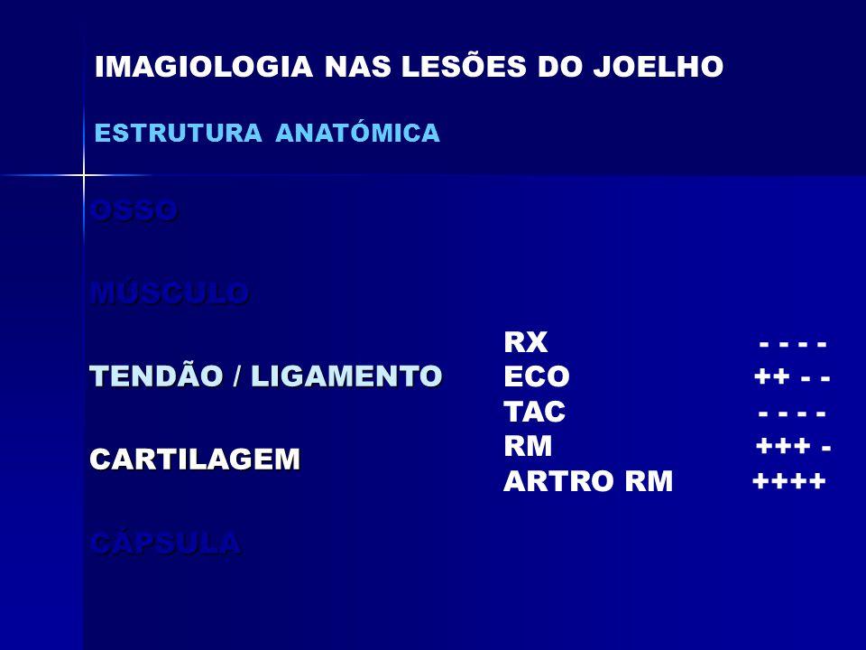 OSSOMÚSCULO TENDÃO / LIGAMENTO CARTILAGEMCÁPSULA IMAGIOLOGIA NAS LESÕES DO JOELHO ESTRUTURA ANATÓMICA RX - - - - ECO ++ - - TAC - - - - RM +++ - ARTRO RM ++++