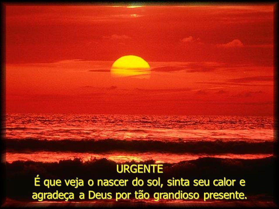 URGENTE É que veja o nascer do sol, sinta seu calor e agradeça a Deus por tão grandioso presente.