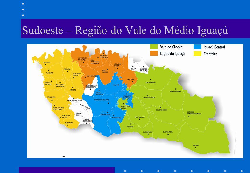 Sudoeste – Região do Vale do Médio Iguaçú