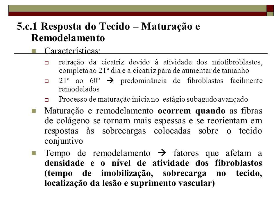 5.c.1 Resposta do Tecido – Maturação e Remodelamento  Características:  retração da cicatriz devido à atividade dos miofibroblastos, completa ao 21º