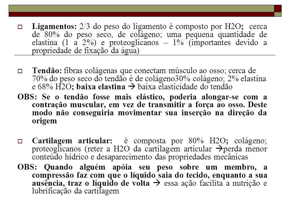  Ligamentos: 2/3 do peso do ligamento é composto por H2O; cerca de 80% do peso seco, de colágeno; uma pequena quantidade de elastina (1 a 2%) e prote