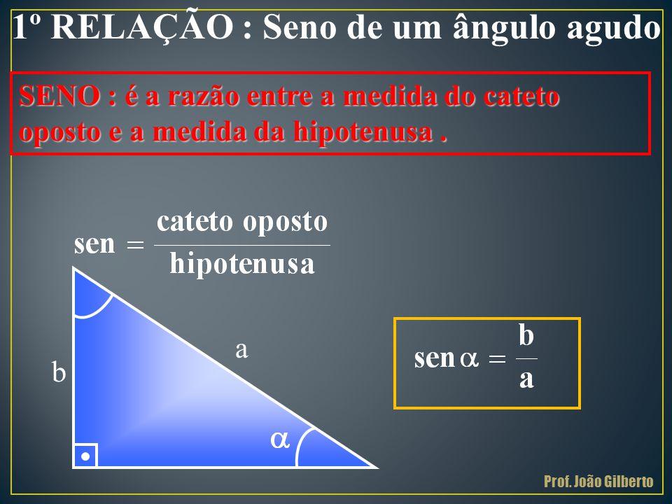 1º RELAÇÃO : Seno de um ângulo agudo SENO : é a razão entre a medida do cateto oposto e a medida da hipotenusa. a b Prof. João Gilberto