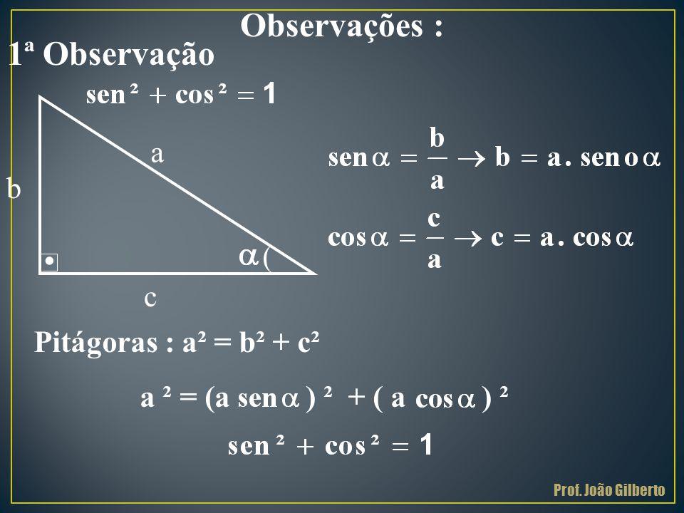 . Observações : a c b ( Pitágoras : a² = b² + c² a ² = (a ) ² + ( a ) ² 1ª Observação Prof. João Gilberto