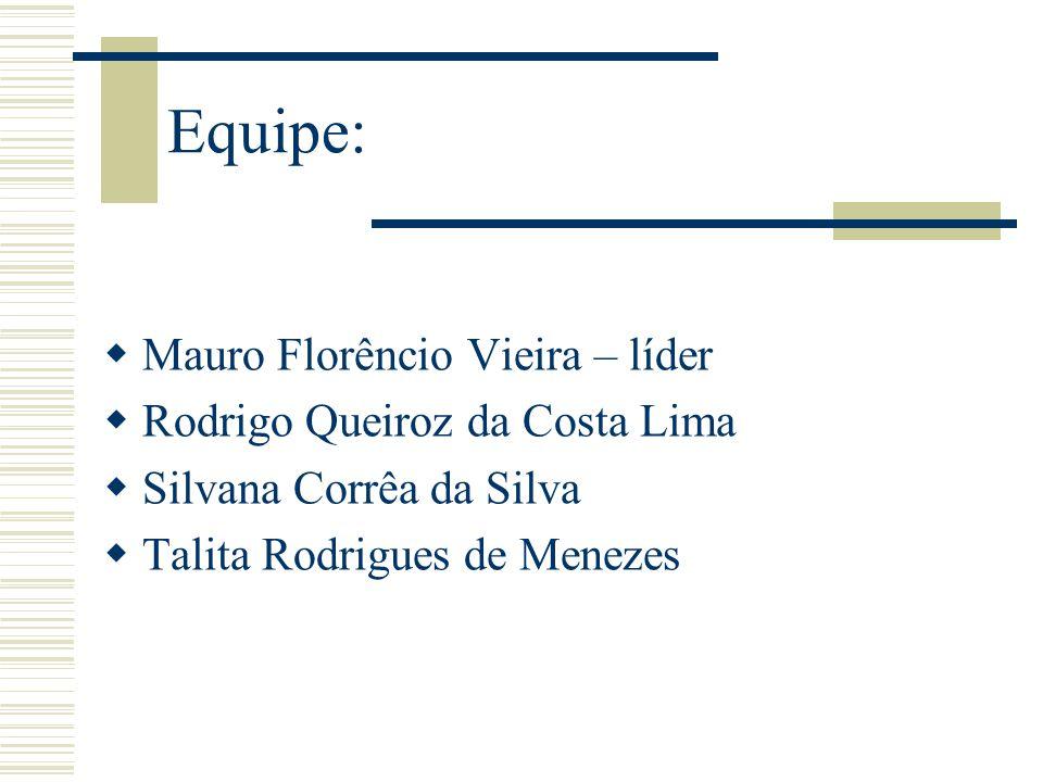 Equipe:  Mauro Florêncio Vieira – líder  Rodrigo Queiroz da Costa Lima  Silvana Corrêa da Silva  Talita Rodrigues de Menezes