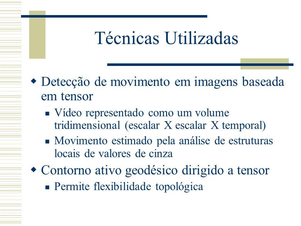 Técnicas Utilizadas  Detecção de movimento em imagens baseada em tensor  Vídeo representado como um volume tridimensional (escalar X escalar X temporal)  Movimento estimado pela análise de estruturas locais de valores de cinza  Contorno ativo geodésico dirigido a tensor  Permite flexibilidade topológica