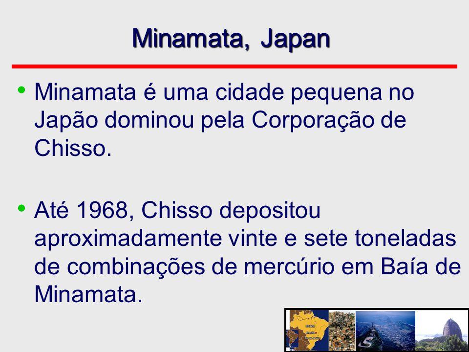 Minamata, Japan • Minamata é uma cidade pequena no Japão dominou pela Corporação de Chisso. • Até 1968, Chisso depositou aproximadamente vinte e sete