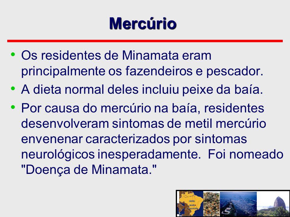 Mercúrio • Os residentes de Minamata eram principalmente os fazendeiros e pescador. • A dieta normal deles incluiu peixe da baía. • Por causa do mercú