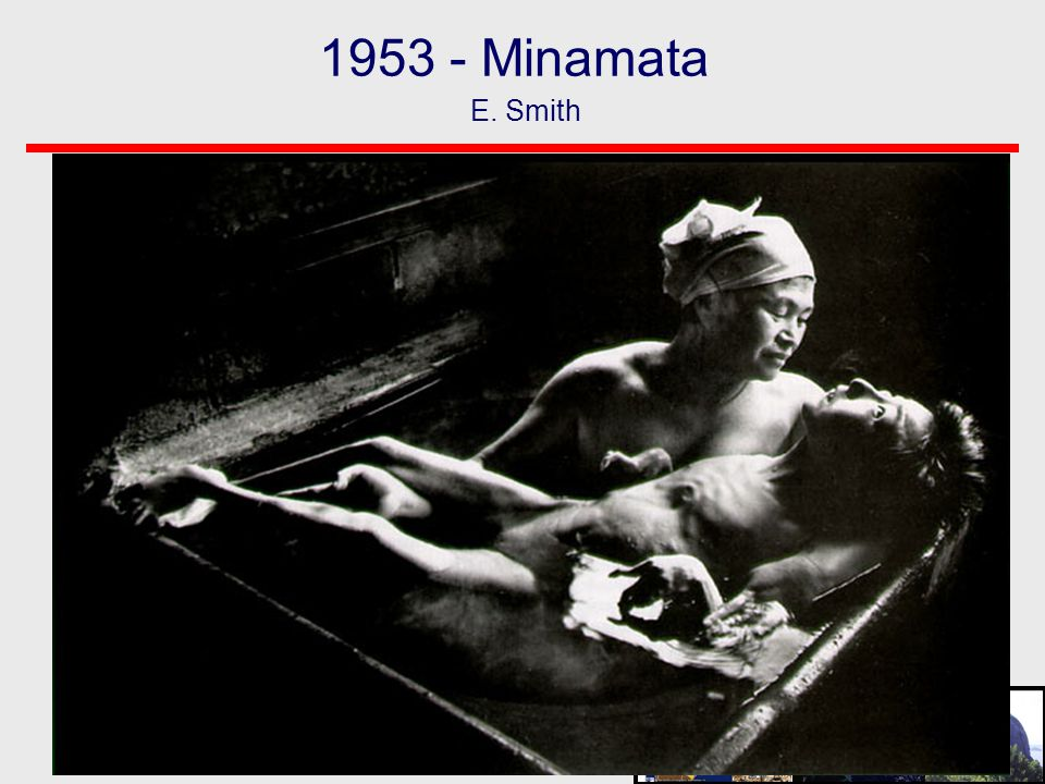 1953 - Minamata E. Smith