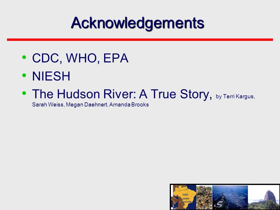 Acknowledgements • CDC, WHO, EPA • NIESH • The Hudson River: A True Story, by Terri Kargus, Sarah Weiss, Megan Daehnert, Amanda Brooks