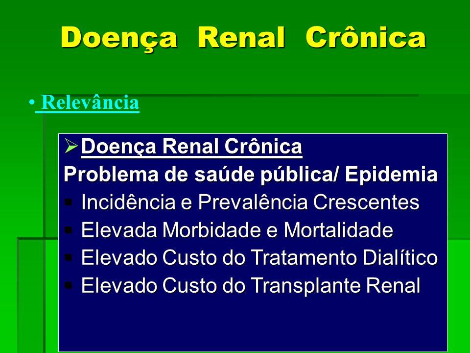  Doença Renal Crônica Problema de saúde pública/ Epidemia  Incidência e Prevalência Crescentes  Elevada Morbidade e Mortalidade  Elevado Custo do
