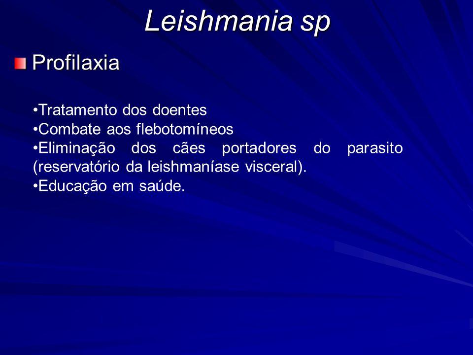 Leishmania sp Profilaxia •Tratamento dos doentes •Combate aos flebotomíneos •Eliminação dos cães portadores do parasito (reservatório da leishmaníase