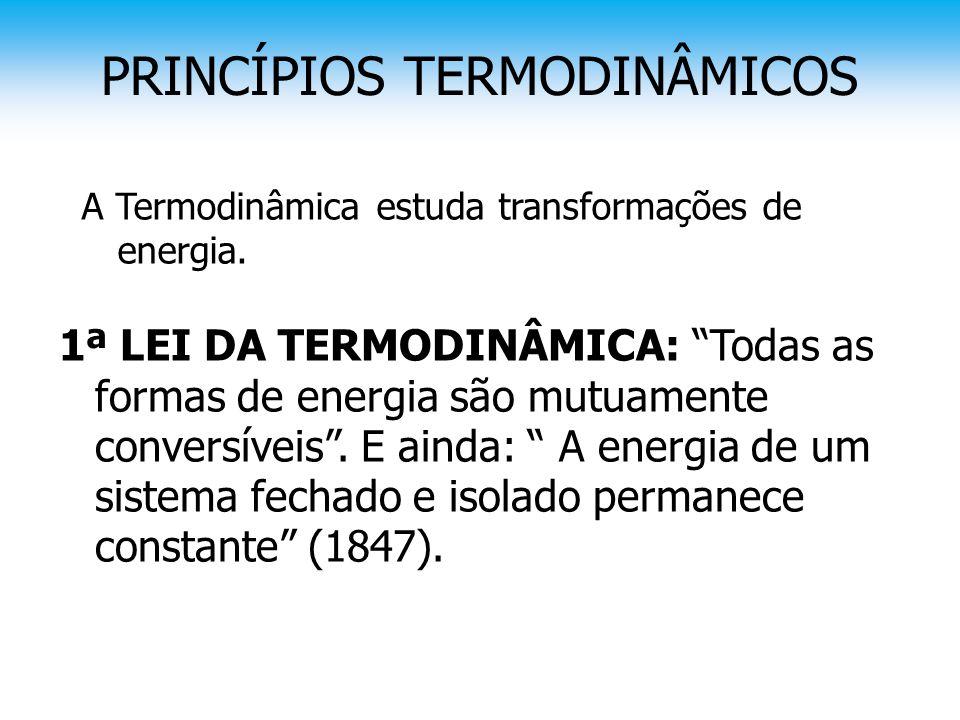 """PRINCÍPIOS TERMODINÂMICOS A Termodinâmica estuda transformações de energia. 1ª LEI DA TERMODINÂMICA: """"Todas as formas de energia são mutuamente conver"""