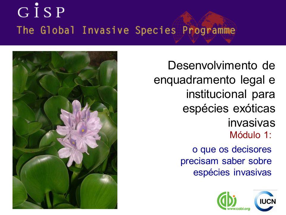 causas e efeitos de espécies invasivas são internacionais ou regionais A gestão e controle de espécies invasivas estão apoiados por instrumentos e directrizes bilaterais, regionais e globais (veja-se módulos 2 & 6)